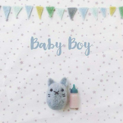Pippi & Me Baby Boy Card